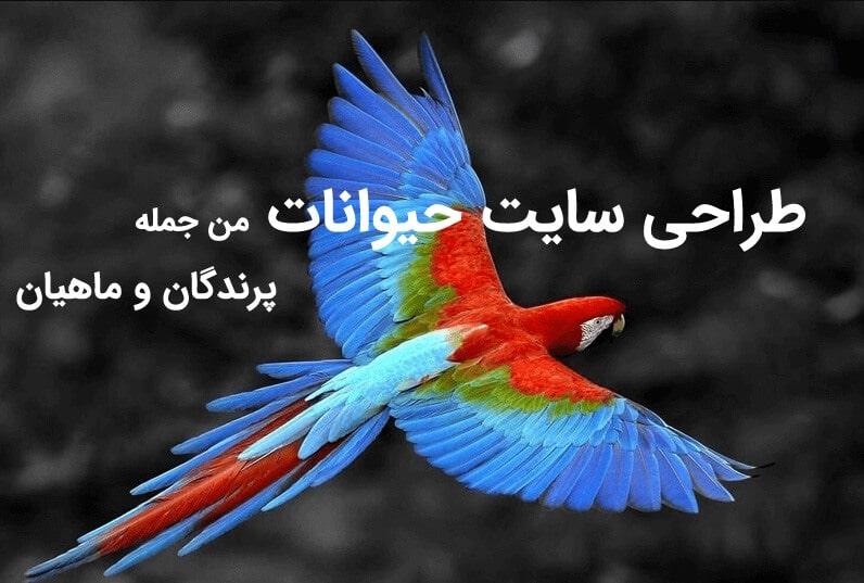 طراحی سایت پرندگان و ماهیان